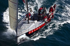 Audi med cup Gallery